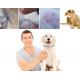 Coleira antipulgas e carraças natural para cães